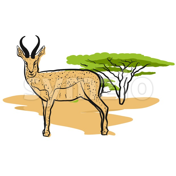 Antelope in savannah Stock Vector