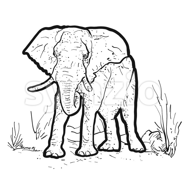 Elephant Outline Illustration Stock Vector