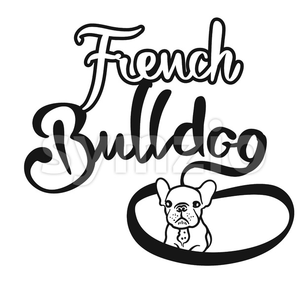 French Bulldog Hand drawn Lettering Logo Stock Vector