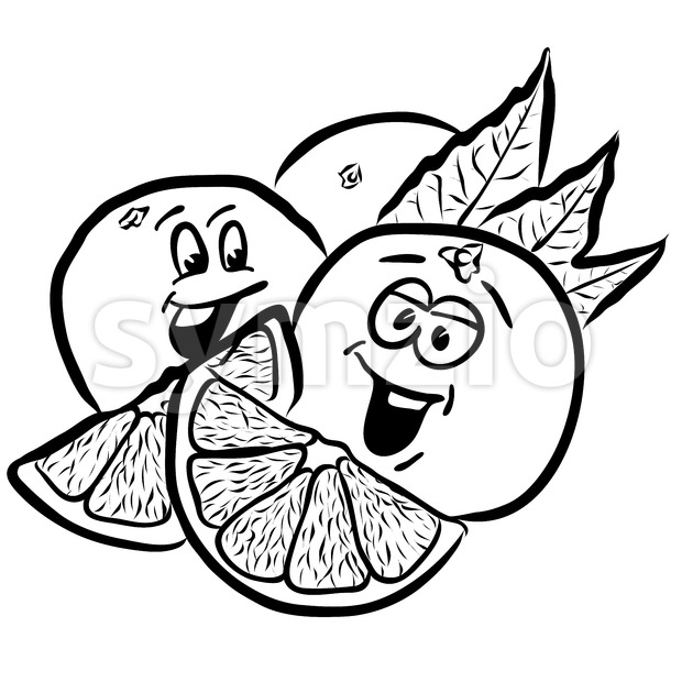 Laughing Oranges Comic Fruits Sketches. Hand drawn Vector Outline Illustrations. Useful for any kind of advertising in web and print.