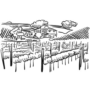 Californian Vineyard with Hills and House Stock Vector