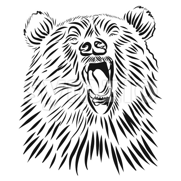 Wild grizzly, Hand drawn vector roaring bear. Stock Vector