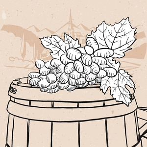 Grapes on sketched wooden barrel with wine Stock Vector
