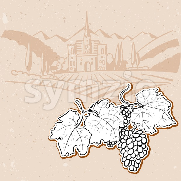 Grapes in Front of Vintage Vineyard Farm Sketched Stock Vector
