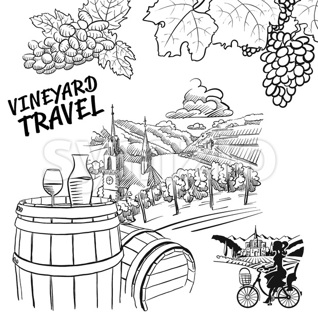 Various Vineyard Travel Concept Sketches Stock Vector