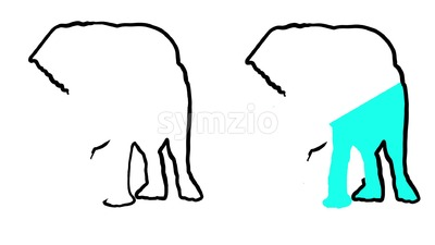 Elephant Outline Animated Illustration Stock Video