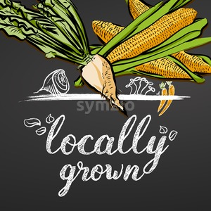 Locally Grown Vegetables Banner Stock Vector
