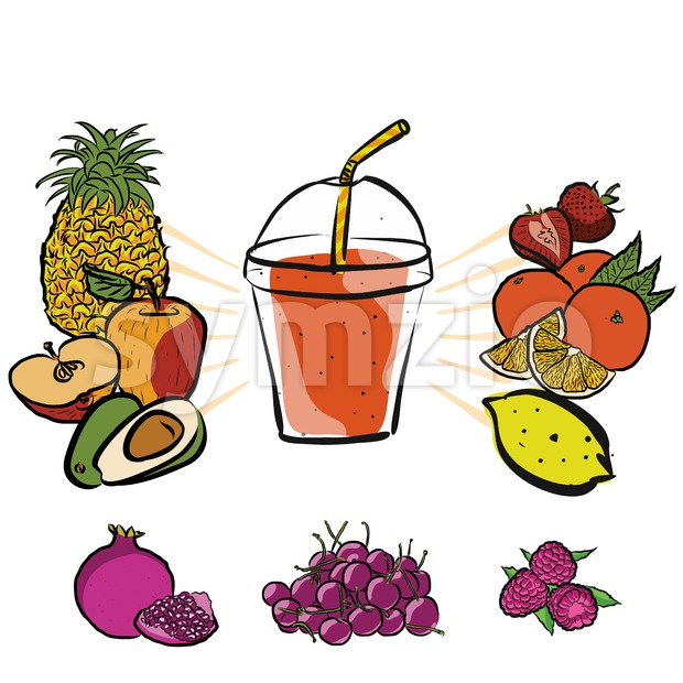 Fresh Summer Fruits and Smoothie to Go Stock Vector