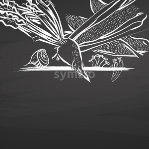 Sugar vegetables drawing on chalkboard Stock Vector