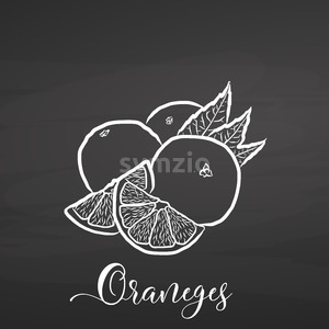 Sliced Oranges. Chalk on chalkboard Stock Vector
